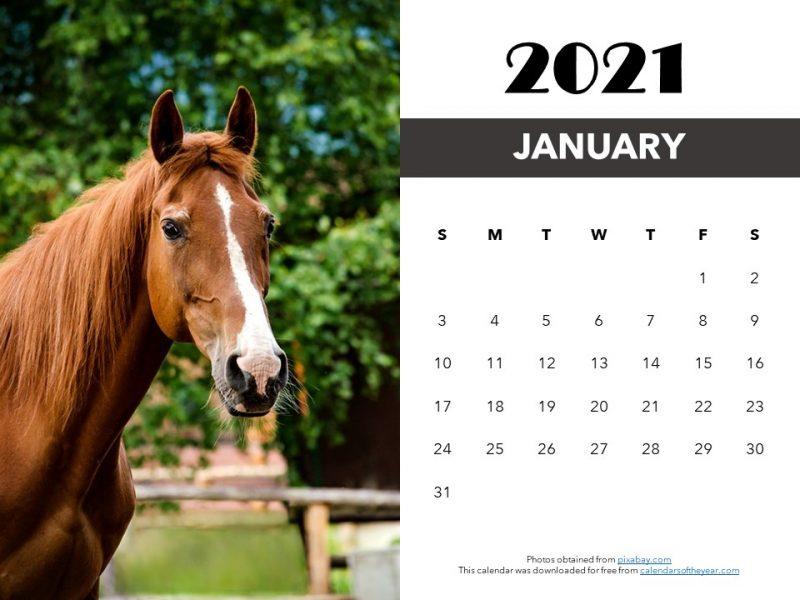 printable horses calendar 2021